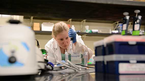 Jessica Burket, a Biomedical Sciences PhD student, works in the lab.