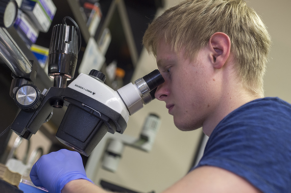 A Biomedical Sciences student studies a sample under the microscope.