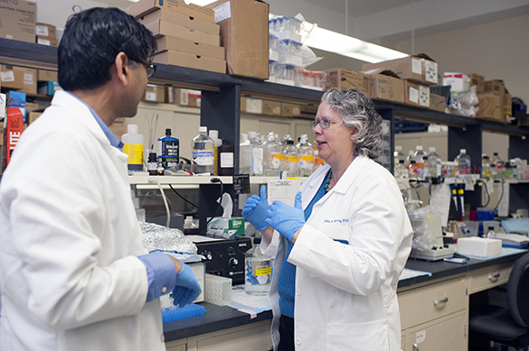 Dr. Julie Kerry converses with an associate in the lab.