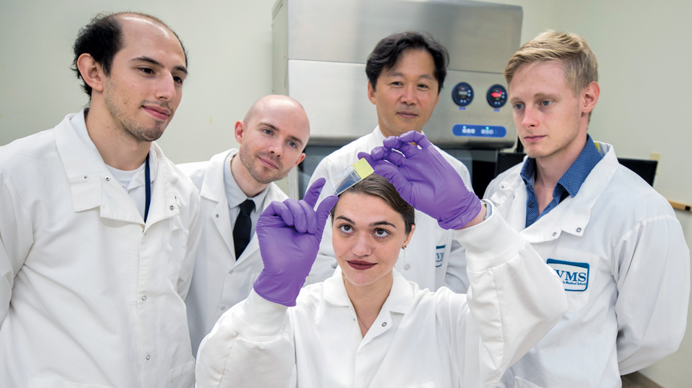 Macrophages may also play a role in supporting cancer cells, says Dr. Woong-Ki Kim (standing second from right) with his research team, from left, Jacques Fair (MD Class of 2024); Derek Irons, Research Assistant; Diana Bohannon (Biomedical Sciences PhD Candidate Class of 2019); and Julian Hattler, Research Assistant.
