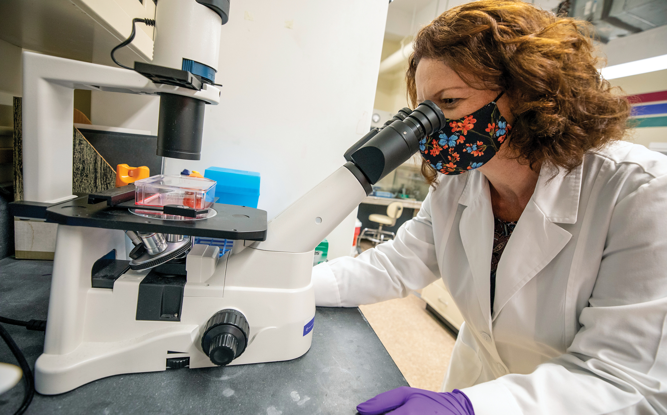 Julia Sharp looks through a microscope while working in her research lab. She is wearing a face mask and gloves.