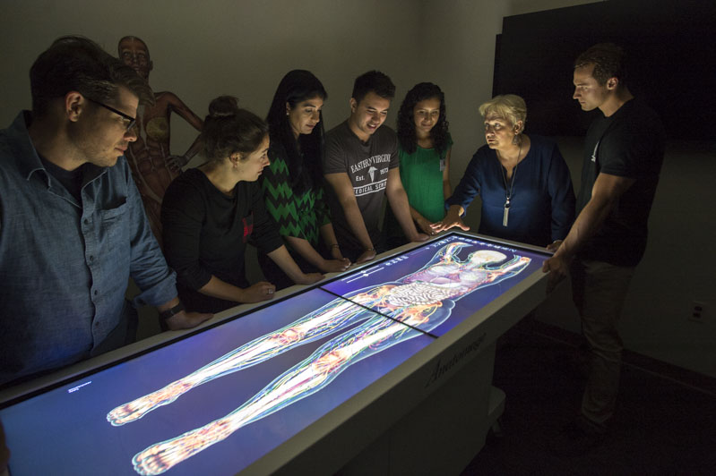 A professor stands with her students in the digital dissection lab.